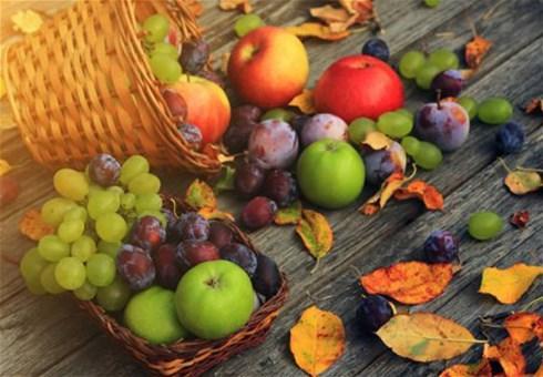 Abeceda voća i povrća